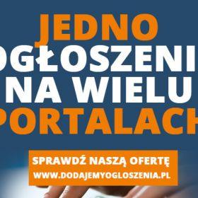 Strony www - projektowanie, reklama, promocja w internecie na portalach ogłoszeniowych